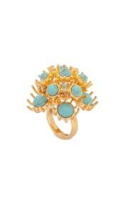 dandelion ring1pp